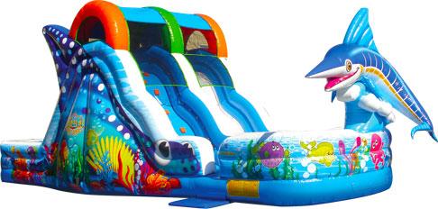 Water Slide Rentals Inflatable